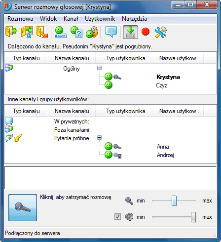 Radmin vcmainwnd Interfejs użytkownika