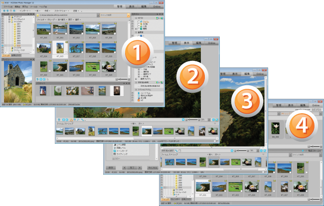 ACDSee Photo Manager ACDSee12Collage JPN ユーザー インターフェイスについて