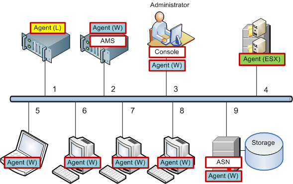 Acronis Backup & Recovery 3185 Setting up centralized data protection in a heterogeneous network