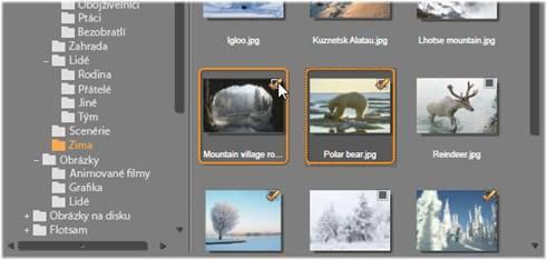 Avid Studio image003 Výběr souborů pro import