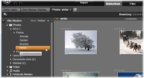 Avid Studio image001 Der Asset Baum