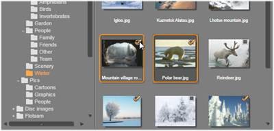 Avid Studio image003 Auswählen von Dateien für den Import
