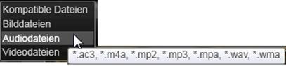 Avid Studio image009 Auswählen von Dateien für den Import