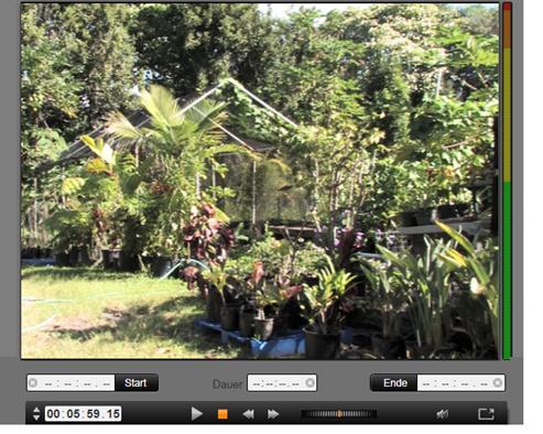 Avid Studio image003 Importieren von einer DV  oder HDV Kamera
