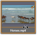 Avid Studio image005 Seleccionar archivos a importar