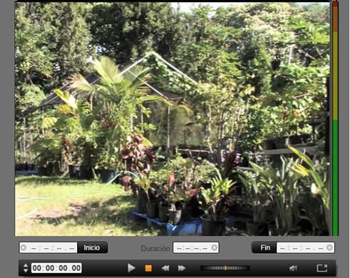 Avid Studio image002 Importar de cámara DV o HDV
