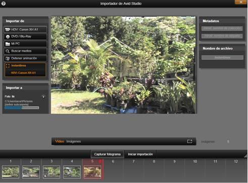Avid Studio image002 Instantánea