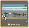 Avid Studio image004 Tuotavien tiedostojen valitseminen