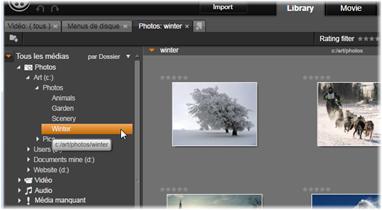 Avid Studio image001 L'arborescence des contenus