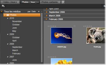 Avid Studio image003 L'arborescence des contenus