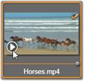 Avid Studio image004 Sélectionner des fichiers à importer