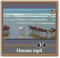 Avid Studio image005 Sélectionner des fichiers à importer