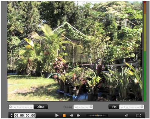 Avid Studio image002 Importer à partir d'une caméra DV ou HDV