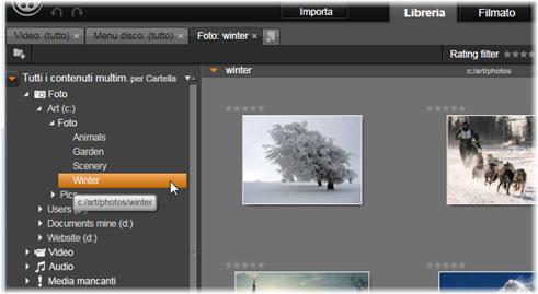 Avid Studio image001 Struttura ad albero degli elementi multimediali