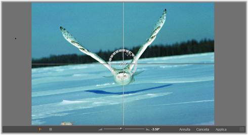 Avid Studio image002 Correzione di foto