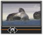 Avid Studio image002 LEditor montaggio