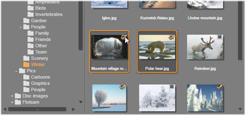 Avid Studio image003 Selezione dei file per limportazione