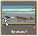 Avid Studio image004 Selezione dei file per limportazione