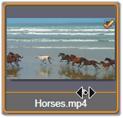 Avid Studio image005 Selezione dei file per limportazione