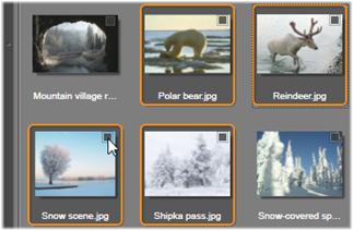 Avid Studio image007 Selezione dei file per limportazione