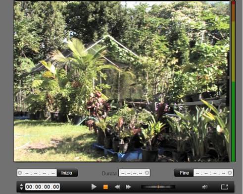 Avid Studio image002 Importazione da videocamera DV o HDV