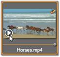 Avid Studio image004 インポートするファイルの選択