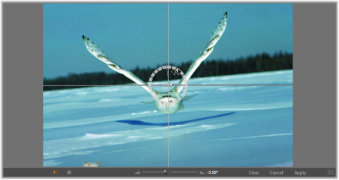 Avid Studio image002 Fotocorrecties