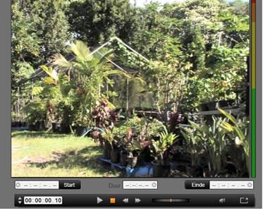Avid Studio image002 Importeren van DV  of HDV camera