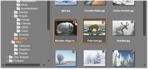 Avid Studio image003 Velge media for importering