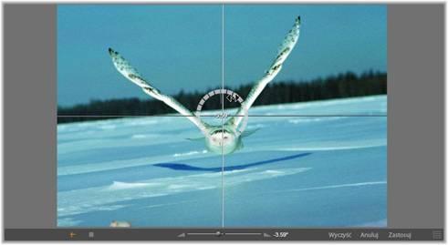 Avid Studio image002 Korekcje zdjęć