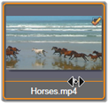 Avid Studio image005 Wybór plików do zaimportowania