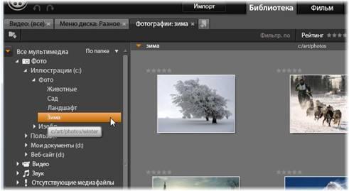 Avid Studio image001 Дерево ресурсов