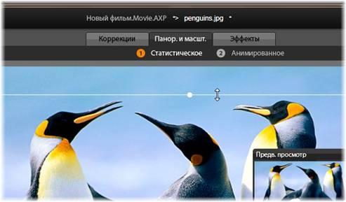 Avid Studio image001 Панорамирование и масштабирование