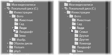 Avid Studio image005 Панель «Импортировать в»