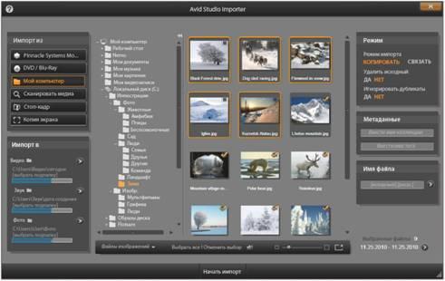 Avid Studio image001 Выбор файлов для импорта