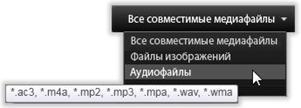 Avid Studio image009 Выбор файлов для импорта