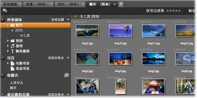 Avid Studio image003 材料树