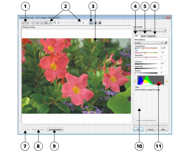 CorelDRAW loc raw lab3 Bringing raw camera files into CorelDRAW