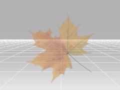 iClone startopacitymidframe Adjusting Particles