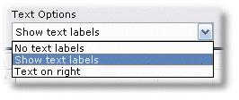 ManagePLUS for QuickBooks htcusttoolbartextoptionsbox1 Customizing the main toolbar