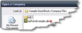ManagePLUS for QuickBooks qssampmpfile About the sample company files