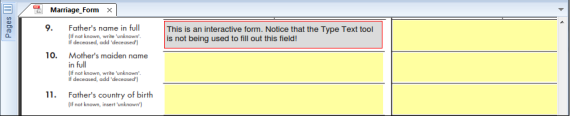 NitroPDF forms fill2 570x116 Fill out and save forms