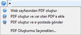 PDF Converter eng web browser Internet Explorerdan