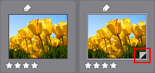 Photo Director virtualc 创建虚拟照片