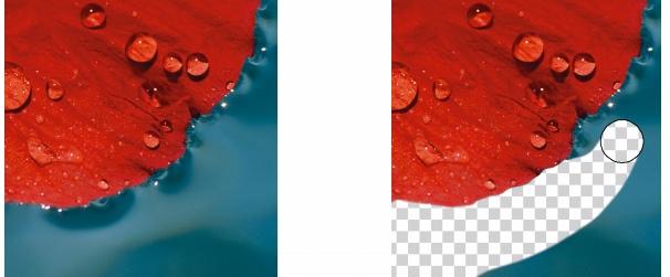 Photo Paint ret eraseimage Apagar áreas da imagem