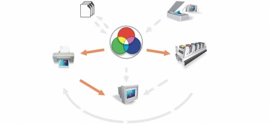 Photo Paint colman dialogue Understanding the Color Management dialog box