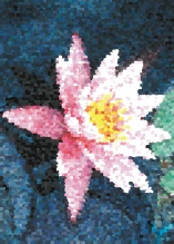 Photo Paint fx art pointillist Gallery of special effects