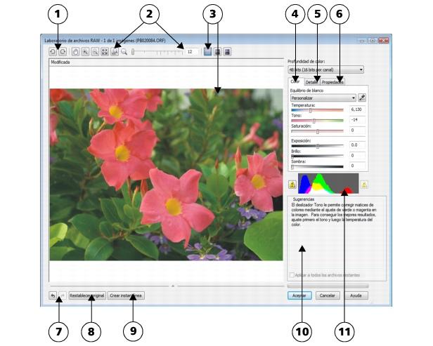 Photo Paint loc raw lab3 Transferencia de archivos RAW a Corel PHOTO PAINT