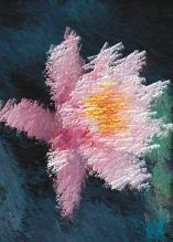 Photo Paint fx art palknife Galerie des types d'effets spéciaux.