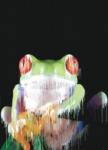 Photo Paint fx distort wetpaint Galerie des types d'effets spéciaux.
